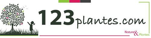 Logo http://123plantes.com