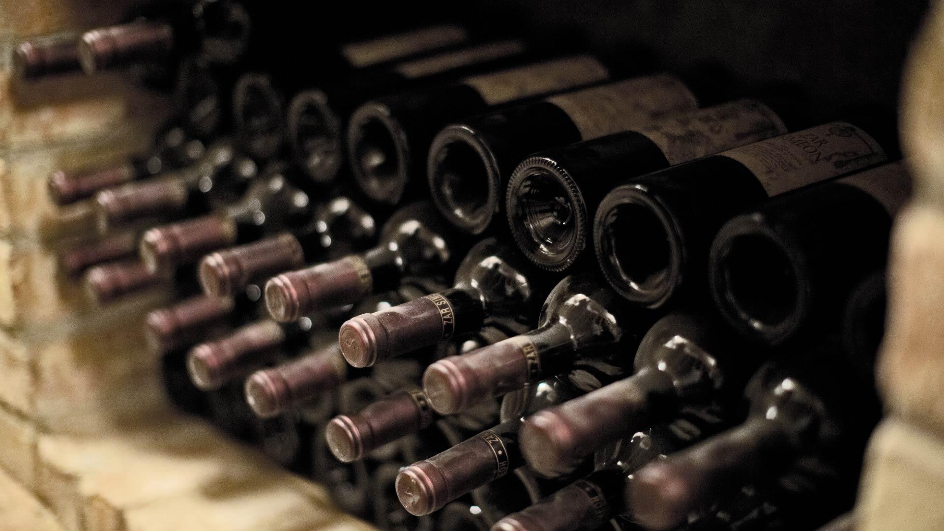 cave a vin ideale caveavin pro