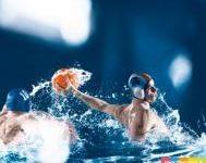 cd95 natation