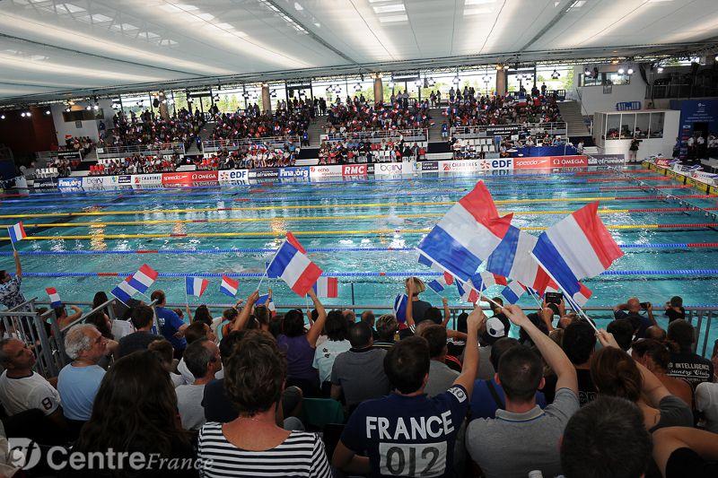coupe du monde de natation