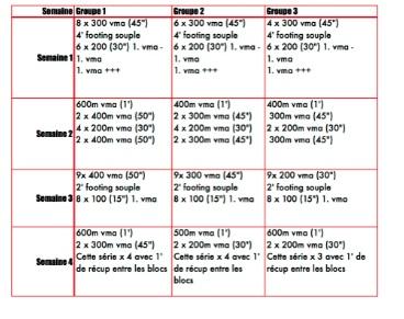 entrainement natation triathlon
