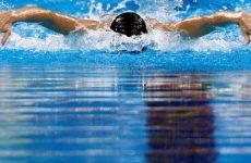 live natation