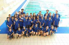 lyonnais natation