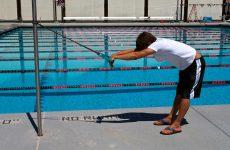 musculation natation