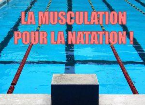 musculation pour natation