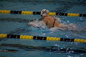 natation brasse