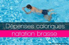 natation calories