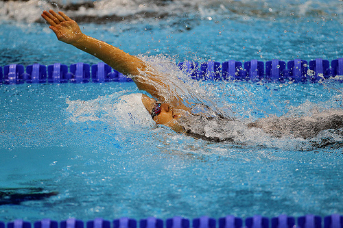 natation dos