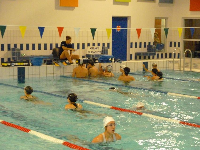 natation tournefeuille