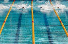 photo natation