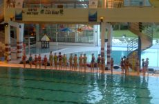 seynod natation