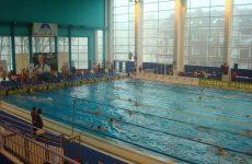 vsj natation